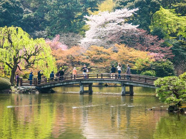 东京|新宿御苑